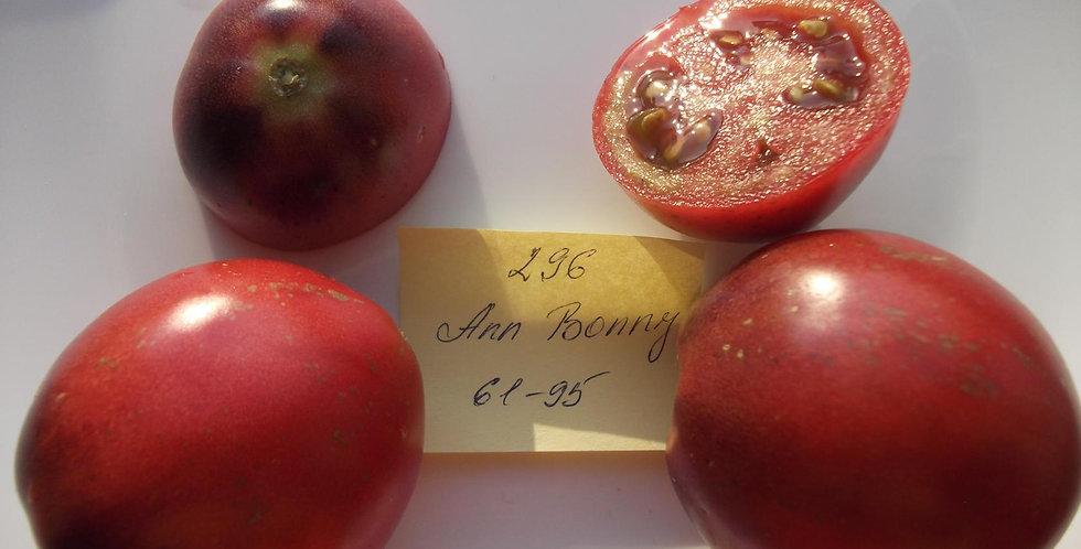 296 - Ann Bonny
