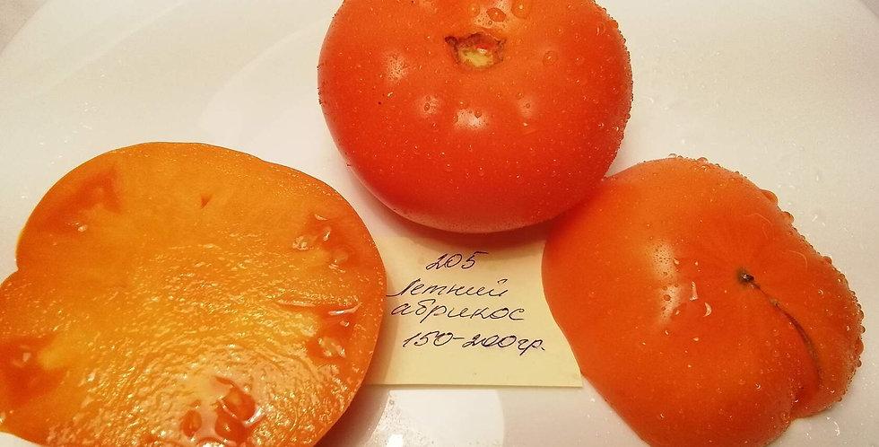 205- Summer apricot / Летний абрикос