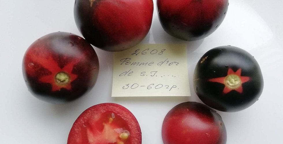 2503-Golden Apple From Saint-Jean-de-BeauregЗолотое яблоко от Сен-Жан-де Борегар