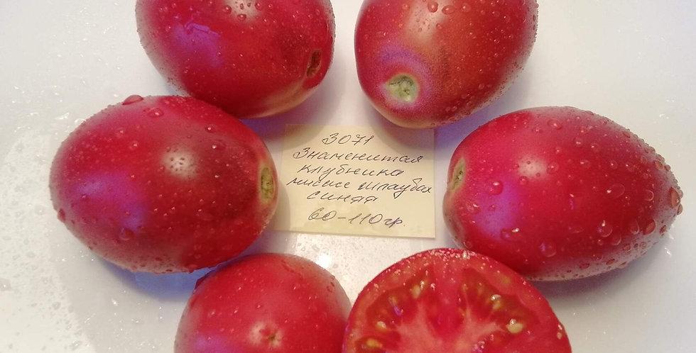 3071- Blue Mrs. Schlaubaugh's Famous Strawberry Знаменитая клубника миссис Шлауб