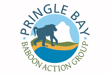 Baboon Action Group logo