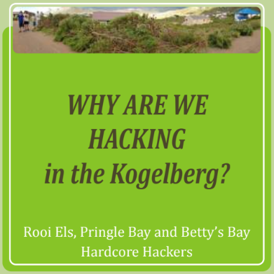 Why are we hacking in the Kogelberg?