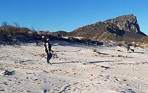 Beach dune rehabilitation in progress