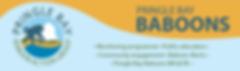 Pringle Bay Baboons banner