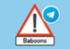 Pringle Bay Baboon Alert Group Telegram