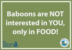 Baboons are only interested in food educational poster