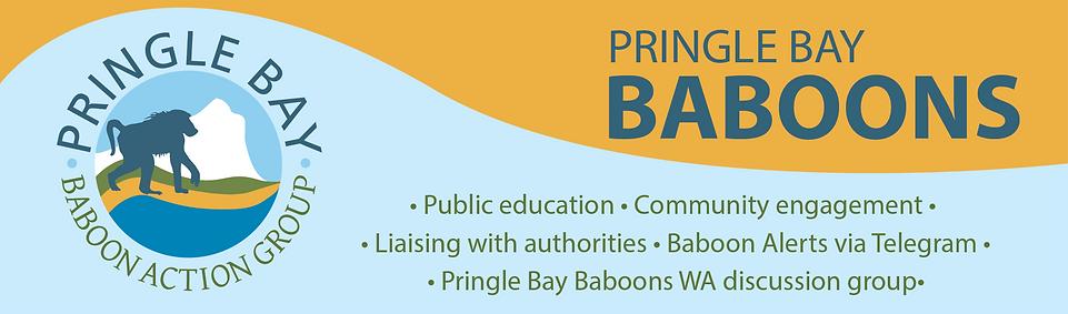 PB Baboons banner2021.png