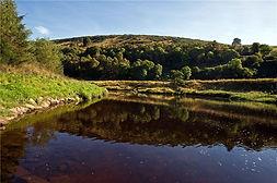 Deveronside Fishings - Upper Netherdale Beat 2