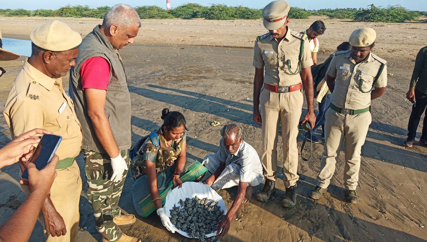 Olive Ridley Turtle Releasing in Nagapattinam