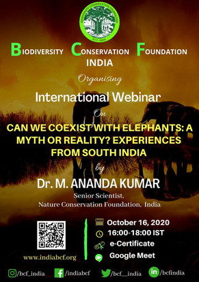 INTERNATIONAL WEBINARS | BCF - INDIA