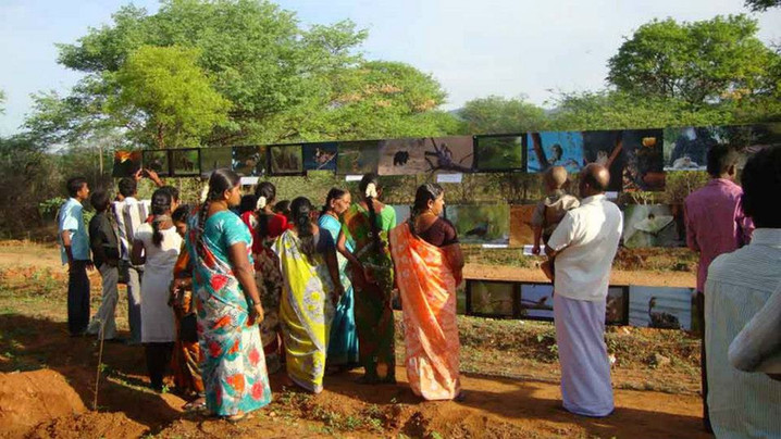 Wildlife Week Celebration- 2012