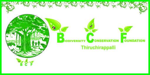 fb bcf logo.jpg