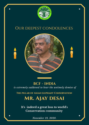 OUR HEARTFELT CONDOLENCES