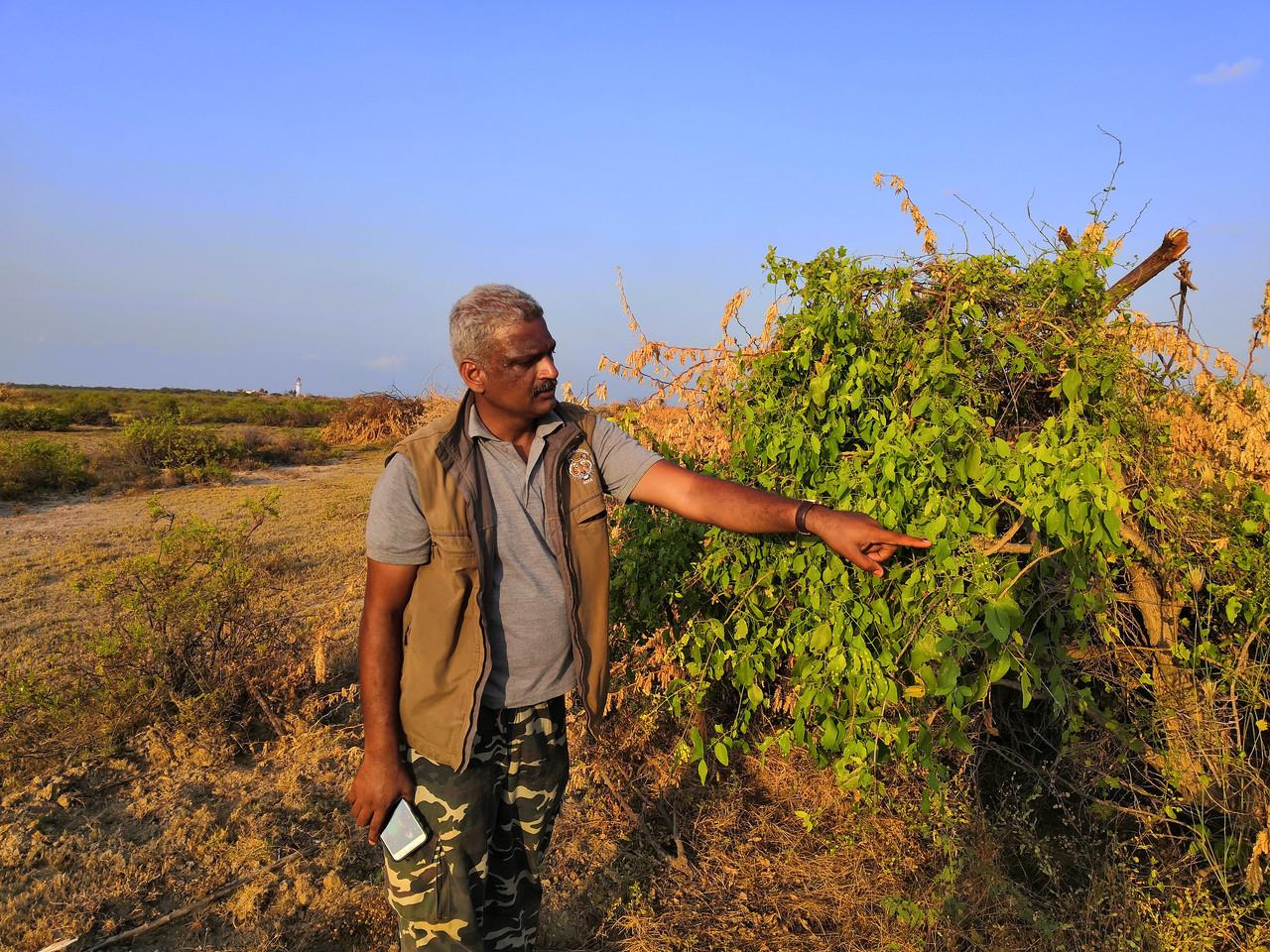 Dr. A. Kumaraguru
