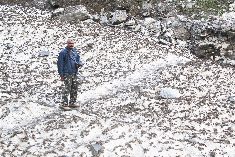 At Himalayas