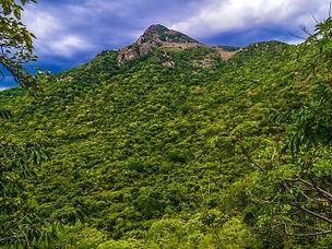 Shervarayan hills.jpg