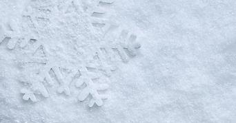 fake_snow_feature.jpg