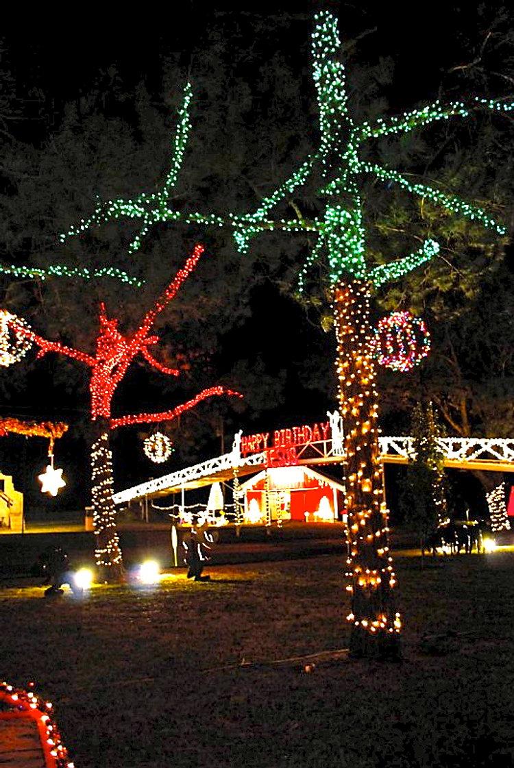Christmas+2012 1+059.jpeg
