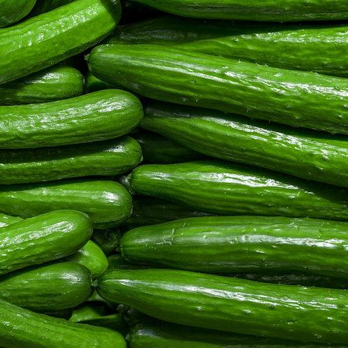 Cucumber & Zucchini Seeds