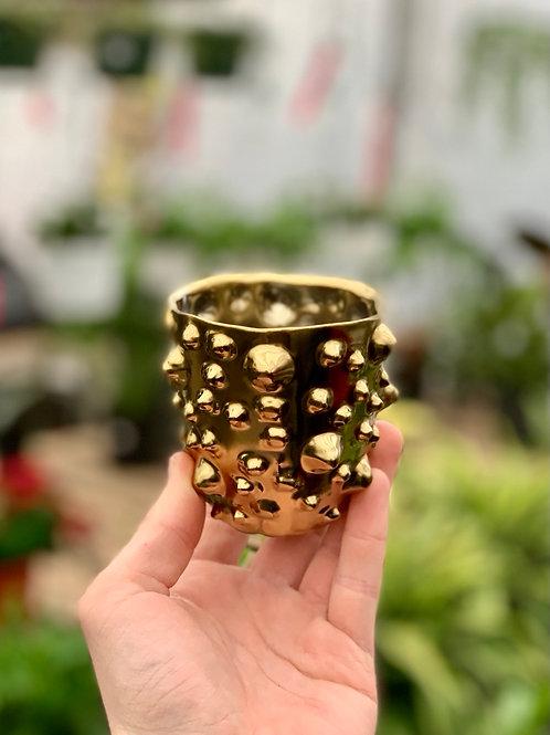 """3"""" Gold Nox Pot"""