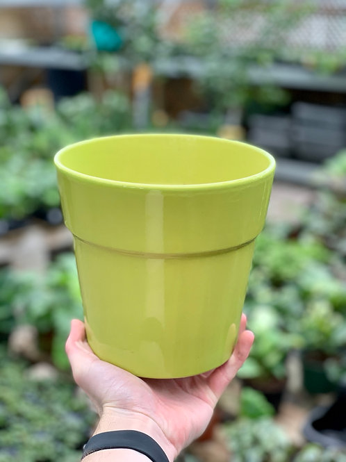 "6.5"" Malibu Green Ceramic Pot"