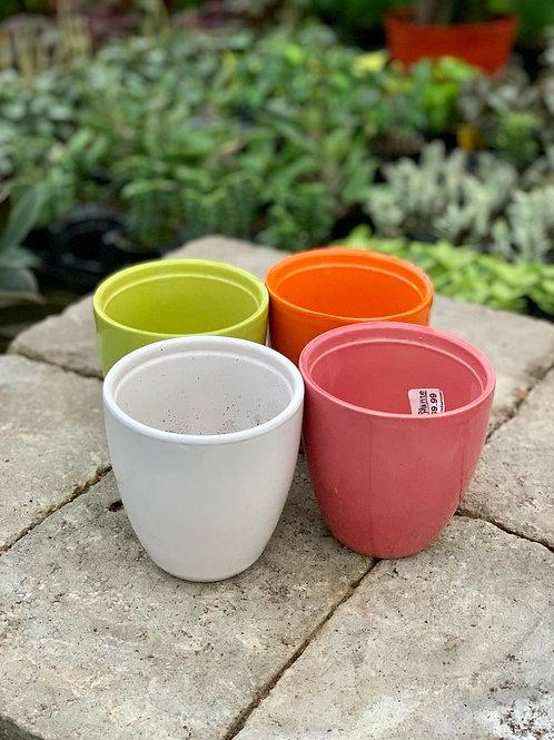 "4"" Bolino Ceramic Pots"