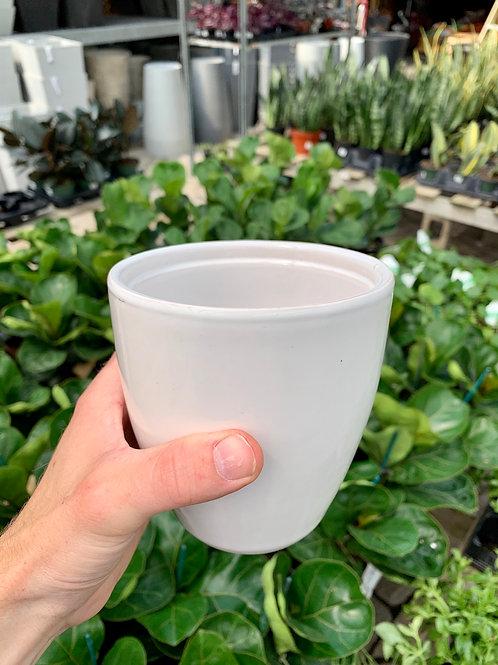 """4"""" Bolino White Ceramic Pot"""