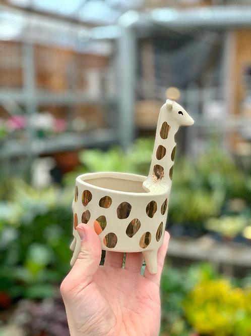 """3.5"""" Small Giraffe Ceramic Planter"""