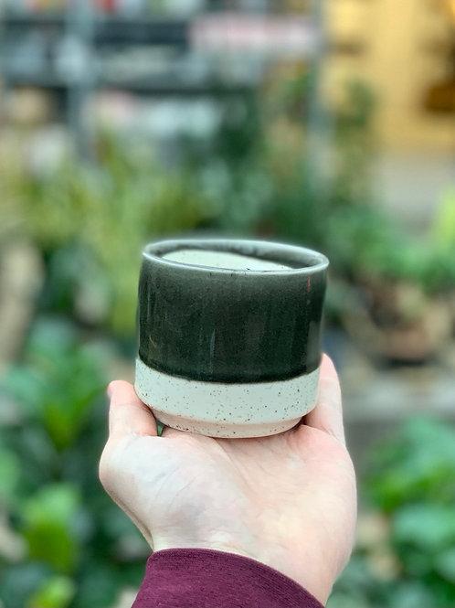 """3"""" Miguel Black Ceramic Pot"""
