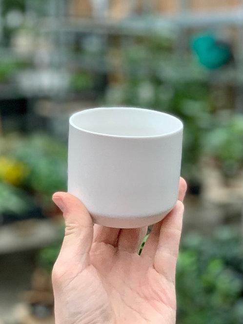"3"" Kendall White Ceramic Pot"