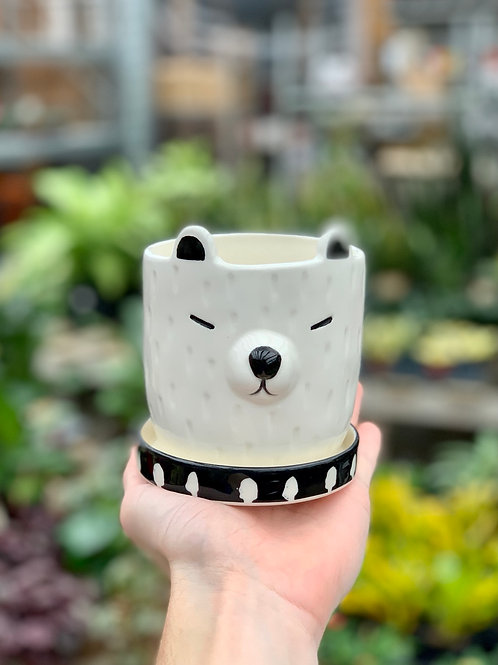 """3.5"""" Barry Dog Ceramic Pot"""