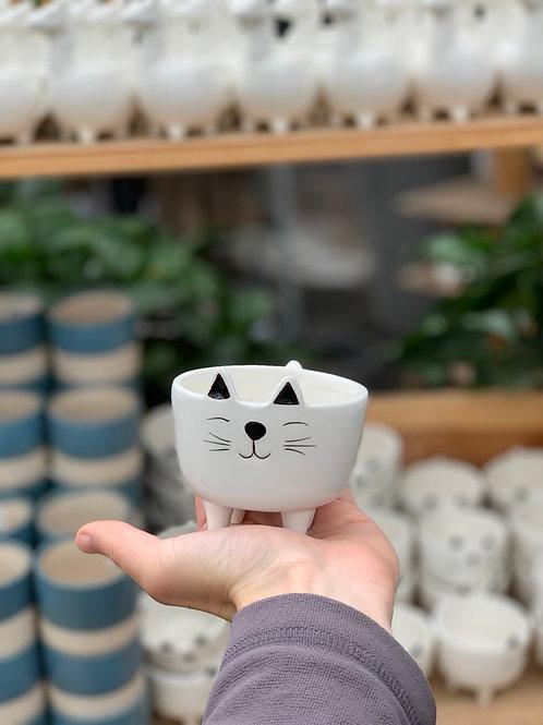 """3"""" Cat Pot"""