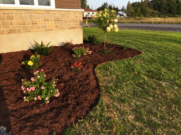 New Flower Beds