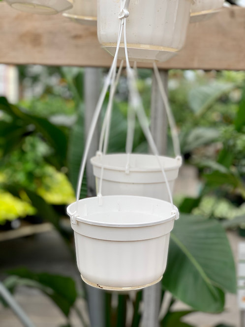 Plastic Grower's Hanging Baskets