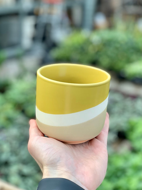 "3.5"" Colorway Marigold Ceramic Pot"