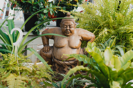Indoor Plants and Statues