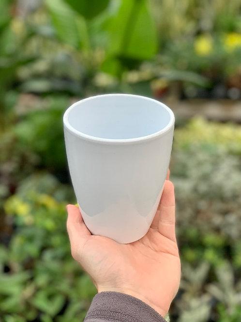 """3.5"""" Cynthia White Ceramic Pot"""