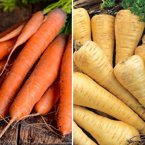 Carrot & Parsnip Seeds