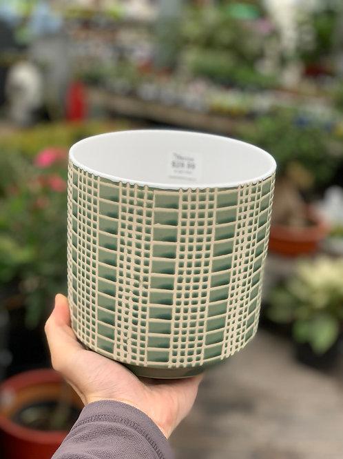 "6"" Zati Green Pot"