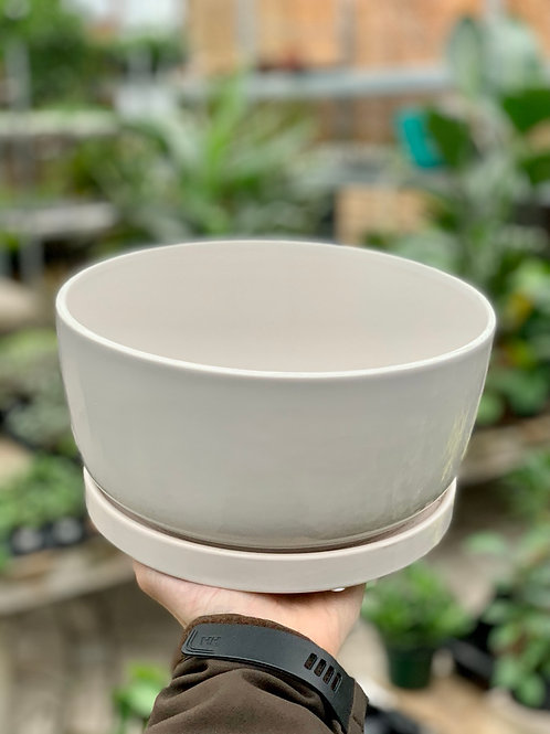 "8"" White Matt Ceramic Bowl w/ Saucer"