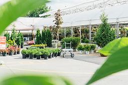 best ottawa garden center.jpg