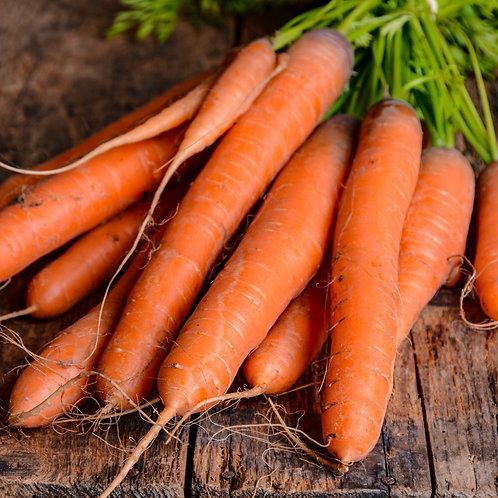 Root Vegetable Seeds