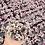 Thumbnail: Callisia 'Pink Lady'