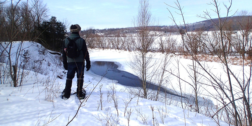 Wild & Scenic Snowshoe - Brownway Trail