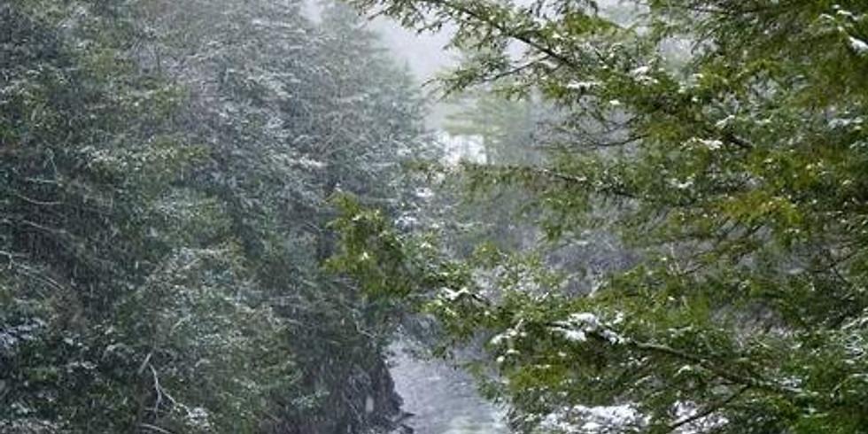 Wild & Scenic Snowshoe - Big Falls State Park