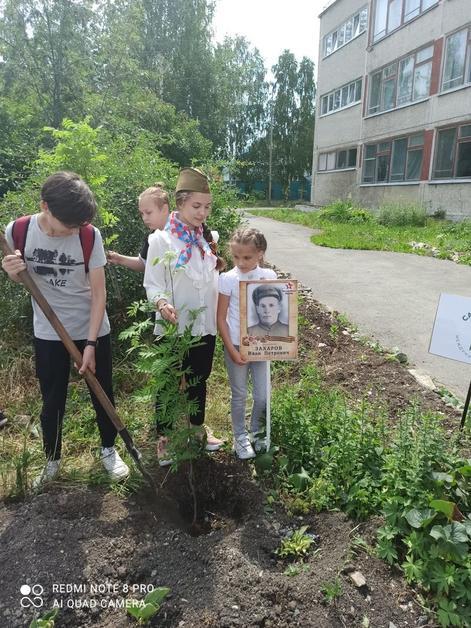 «Сад Памяти» - символ памяти и благодарности мирных поколений