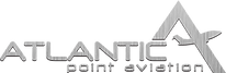 ATLANTIC POINT LOGO(steel).png