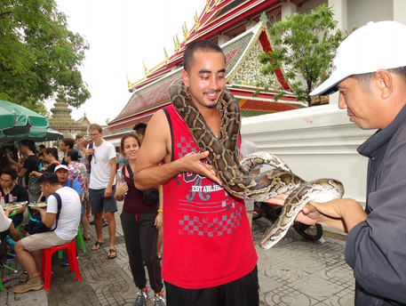 Thai snake.JPG