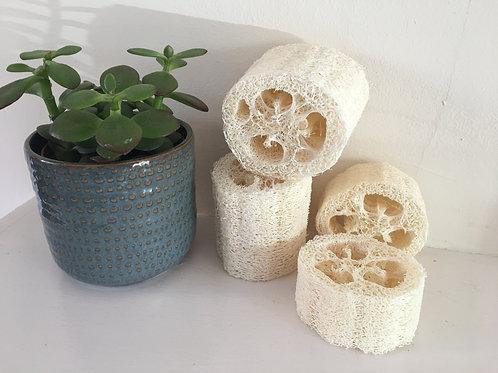 Loofah Sponges: Natural Exfoliators