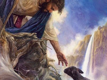 Shepherd My Soul